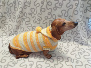 Hoodie  for dog, hoodie for miniature dachshund
