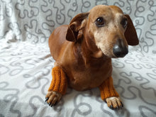 Load image into Gallery viewer, Soft wool comfortable dog leggings, dog leggings, pet sock, protective leggings