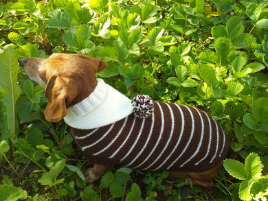 Brown Striped Hoodies for Dogs