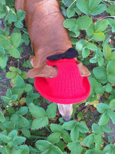 Load image into Gallery viewer, Pet clothes red summer hat with black bow, panama for dachshund