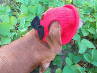 Pet clothes red summer hat with black bow, panama for dachshund