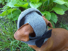 Load image into Gallery viewer, Summer hat Panama for the dog gray with black bow, summer clothes for pets