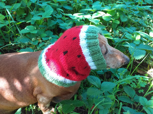 Watermelon dog clothes hat snood, dachshund snood Watermelon