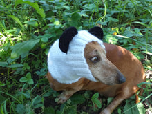 Load image into Gallery viewer, Panda dog clothes hat snood, dachshund snood panda
