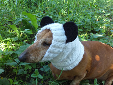Panda dog clothes hat snood, dachshund snood panda