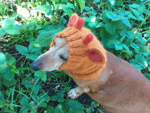 Load image into Gallery viewer, Giraffe dog clothes hat snood, dachshund snood Giraffe