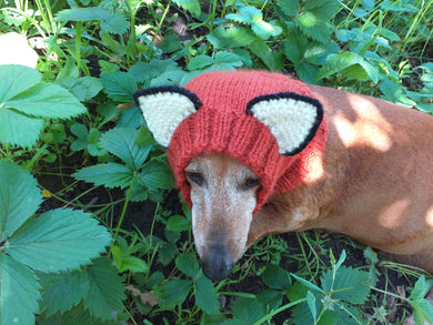 Fox dog clothes hat snood, dachshund snood fox