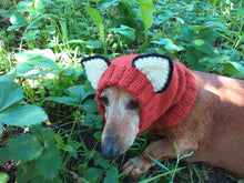 Load image into Gallery viewer, Fox dog clothes hat snood, dachshund snood fox