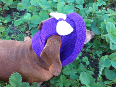 Knitted summer panama for dog, panama for dachshund, summer hat for dog