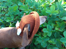 Load image into Gallery viewer, Pet clothes summer hat, panama for dachshund