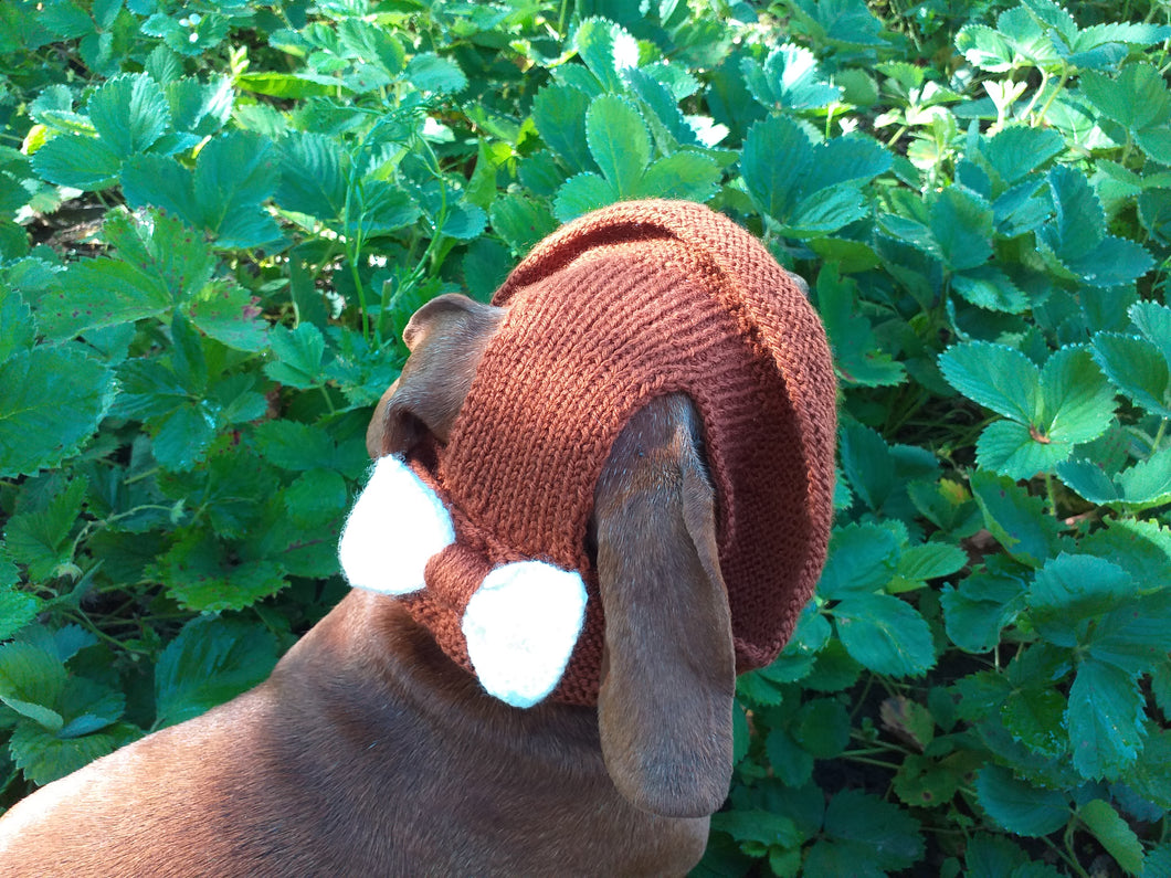 Pet clothes summer hat, panama for dachshund