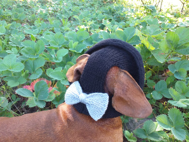 Summer knitted Panama for a dog black with a gray bow, panama for dachshund