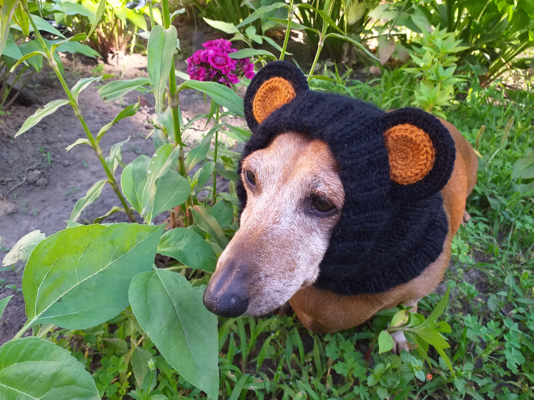 Dachshund black bear hat snood, dog clothes hat snood bear