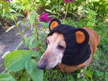 Load image into Gallery viewer, Dachshund black bear hat snood, dog clothes hat snood bear