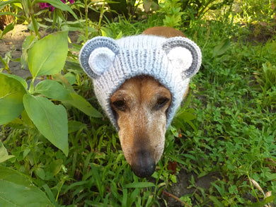 Dachshund gray bear hat snood, dog clothes hat snood bear