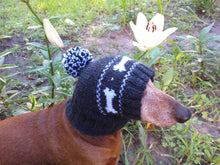 Load image into Gallery viewer, Clothing for dog hat with bones