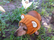 Load image into Gallery viewer, Dachshund grizzly bear hat snood, dog clothes hat snood bear