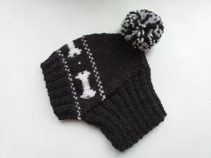 Clothing for dog hat with bones