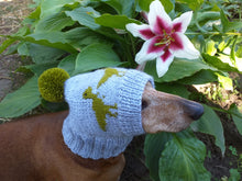 Load image into Gallery viewer, Dinosaur hat for dog, hat with dinosaur dog clothes