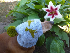Dinosaur hat for dog, hat with dinosaur dog clothes