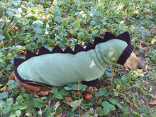 Load image into Gallery viewer, Dog Costume Dragon Dinosaur, Dinosaur costume for dog, dinosaur kit hat and dachshund sweater