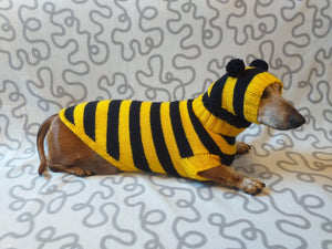Bee costume for dachshund, sweater and hat bee for dachshund, bee costume for dog