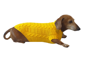 Yellow knitted sweater for dachshund or small dog