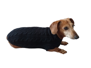 Handmade black knitted sweater for miniature dachshund or small dog, clothes for miniature dachshund