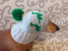 Load image into Gallery viewer, Dinosaur dog clothes pom pom hat, dinosaur hat for dachshund dog