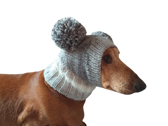 Knitted hat for dog with two large pompons