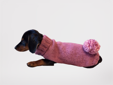 Sweater with pompom for dachshund puppy or small dog knitted of angora wool handmade.