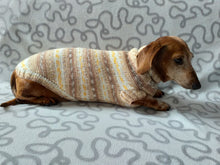 Load image into Gallery viewer, Knitted clothes dachshund sweater, dachshund clothes, dachshund sweater, doxie clothes
