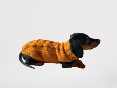 Clothes for small dog little dachshund knitted sweater, sweater for chihuahua, sweater for yorkshire terrier, sweater for toy terrier