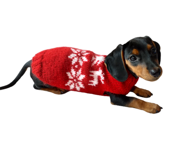 Christmas wool sweater with deer and snowflakes for a small dog, sweater deer for dog, christmas sweater with deer for little dachshund
