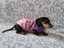 Load image into Gallery viewer, Three-color knitted sweater for a small dog,jumper for small dogs, clothes sweater for dogs, knitted warm wool jumper for small dachshund