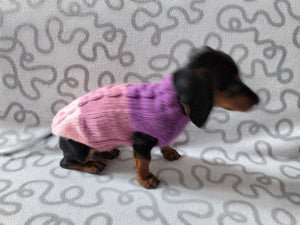Three-color knitted sweater for a small dog,jumper for small dogs, clothes sweater for dogs, knitted warm wool jumper for small dachshund