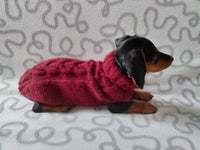 Knitted jumper for small dogs, sweater for small dachshund, sweater for chihuahua, sweater for yorkshire terrier, sweater for toy terrier