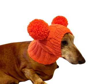 Bright orange knitted hat for dachshund or small dogs with two pom poms, dog clothes hat with two pom poms