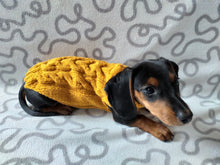 Load image into Gallery viewer, Knitted sweater for dogs, clothes for dachshunds, sweater for dogs, clothes for dogs, sweater for small dogs, dachshund sweater