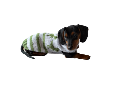 Dinosaur knitted sweater for dachshund or small dog, dinosaur dog sweater, dino sweater