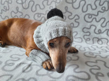 Load image into Gallery viewer, Leggings and hat set for dogs, leggings and hat for dachshund, warm head and paws for dogs, Dog Legwarmer
