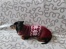 Load image into Gallery viewer, Christmas sweater with snowflake for dogs, sweater snowflake for dog, christmas sweater with snowflake for little dachshund
