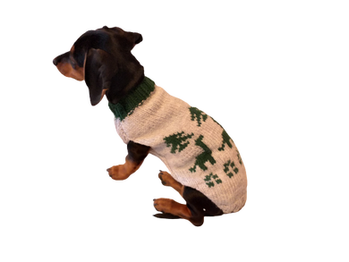 Christmas dinosaur sweater for dog, knitted dinosaur sweater for dachshund, dinosaur clothes for dogs