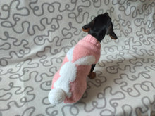 Load image into Gallery viewer, Sweater with rabbit with a pompom for dog, Easter sweater with rabbit for dog