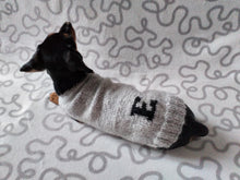 Load image into Gallery viewer, Personalized dog sweater with initials, dog clothes with letter of name, dog clothes with initials, monogram dog sweater