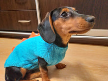 Load image into Gallery viewer, Dinosaur knitted jumper for small dogs, dinosaur sweater for dog, dachshund dinosaur sweater for dogs