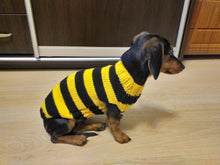Load image into Gallery viewer, Bee knitted jumper for small dogs, bee sweater for dog, dachshund bee dog sweater