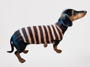 Brown striped knitted sweater for dog, clothes for dachshund, sweater for dog, clothes for dog, sweater for small dogs