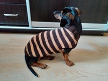Load image into Gallery viewer, Brown striped knitted sweater for dog, clothes for dachshund, sweater for dog, clothes for dog, sweater for small dogs