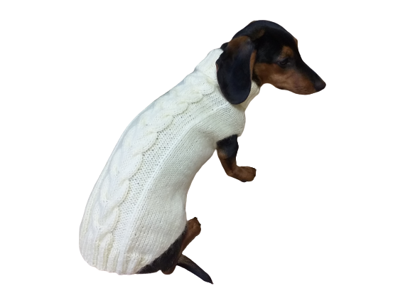 Dachshund clothes knitted sweater, knitted wool sweater for dachshund or small dog